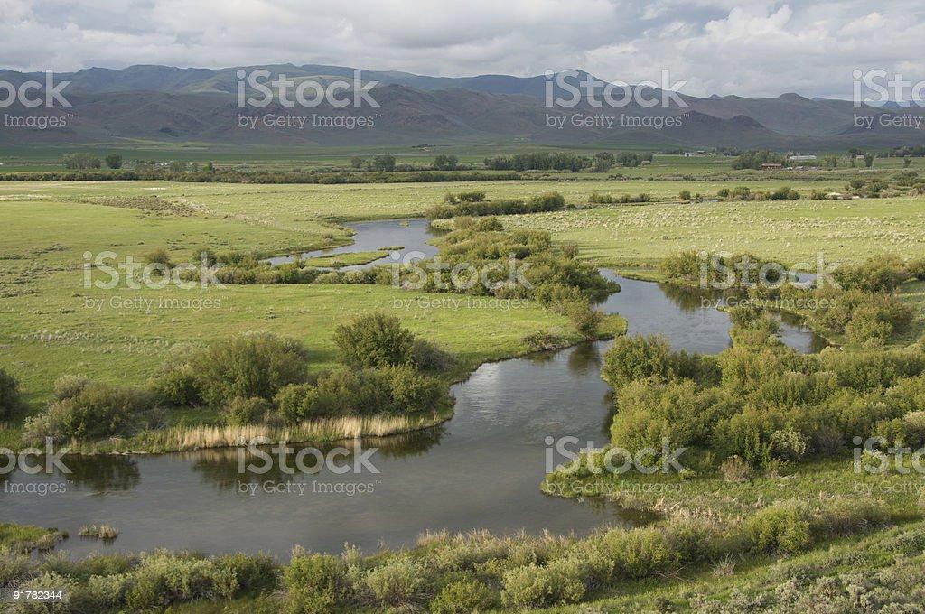Idaho Spring Creek stock photo