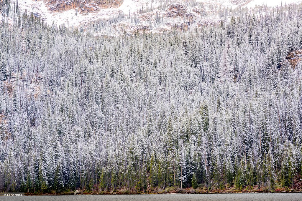 Idaho winter mountain forest with lake stock photo