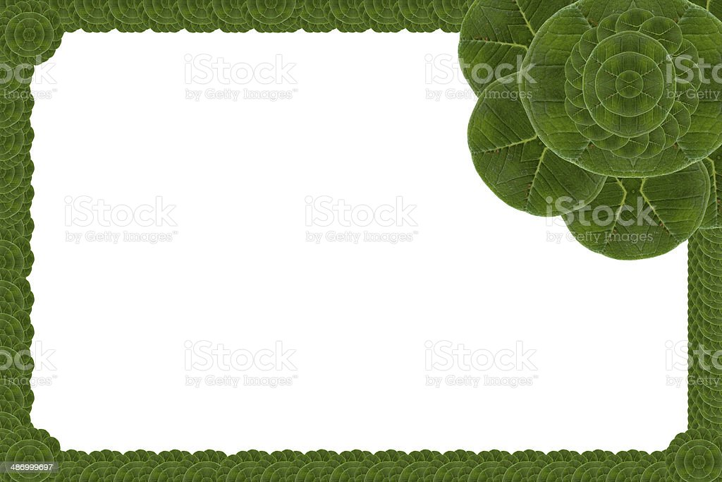Idea  frame leaf. royalty-free stock photo