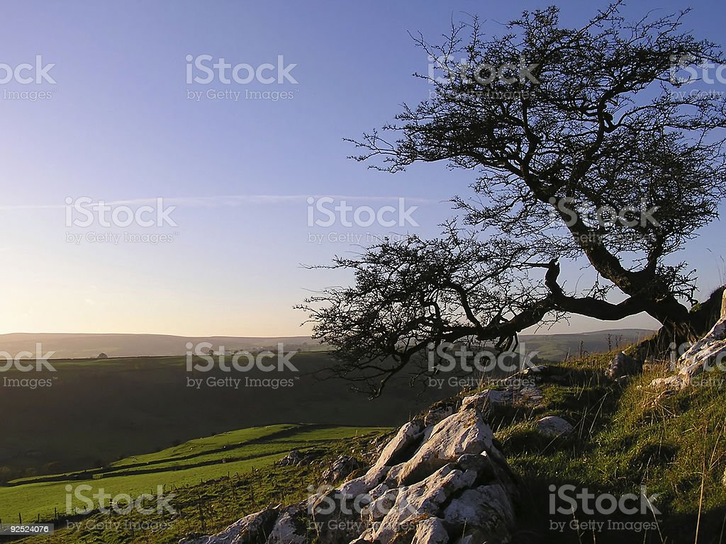 Ideal landscape royalty-free stock photo