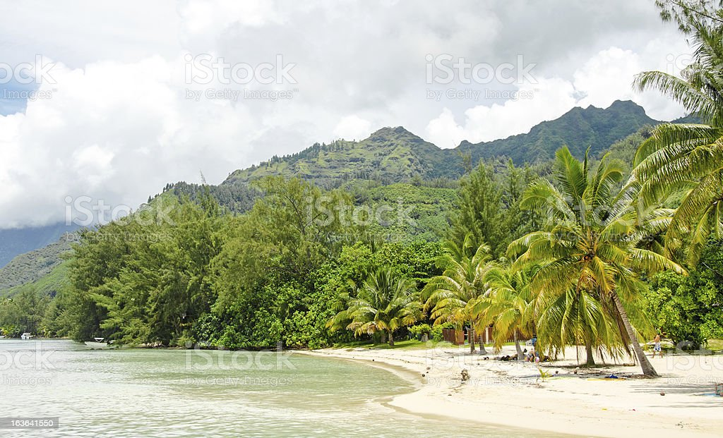 Ideal Moorea Beach royalty-free stock photo