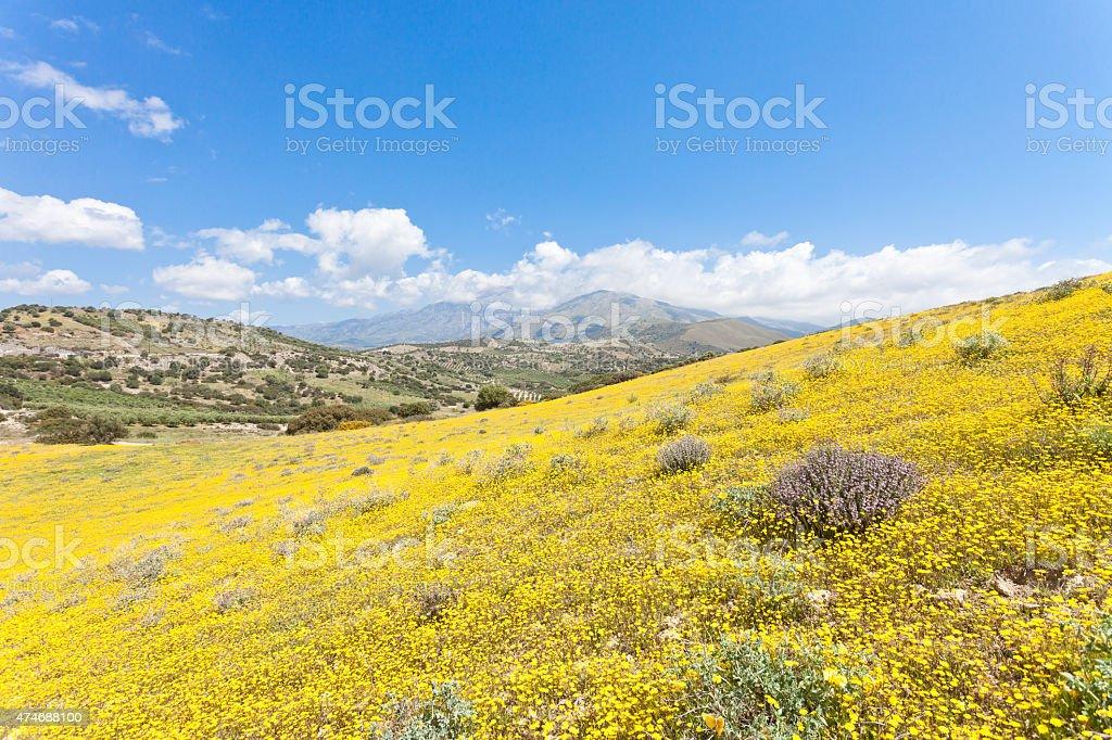 Idyll of Greece stock photo