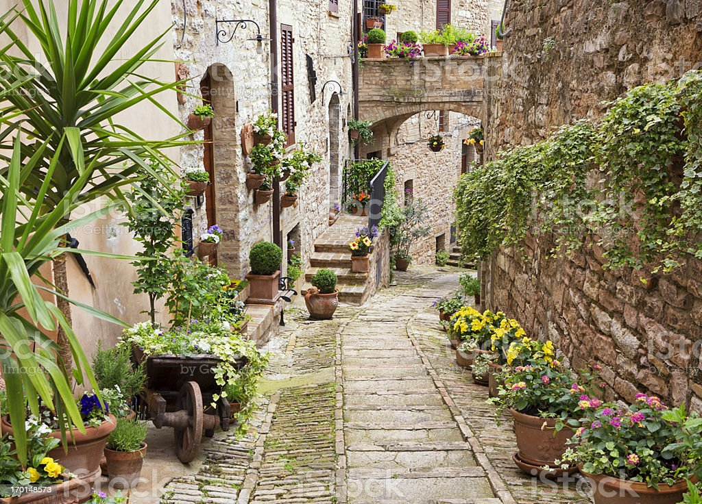 Idyllic alley with potted plants in Spello, Umbria Italy stock photo