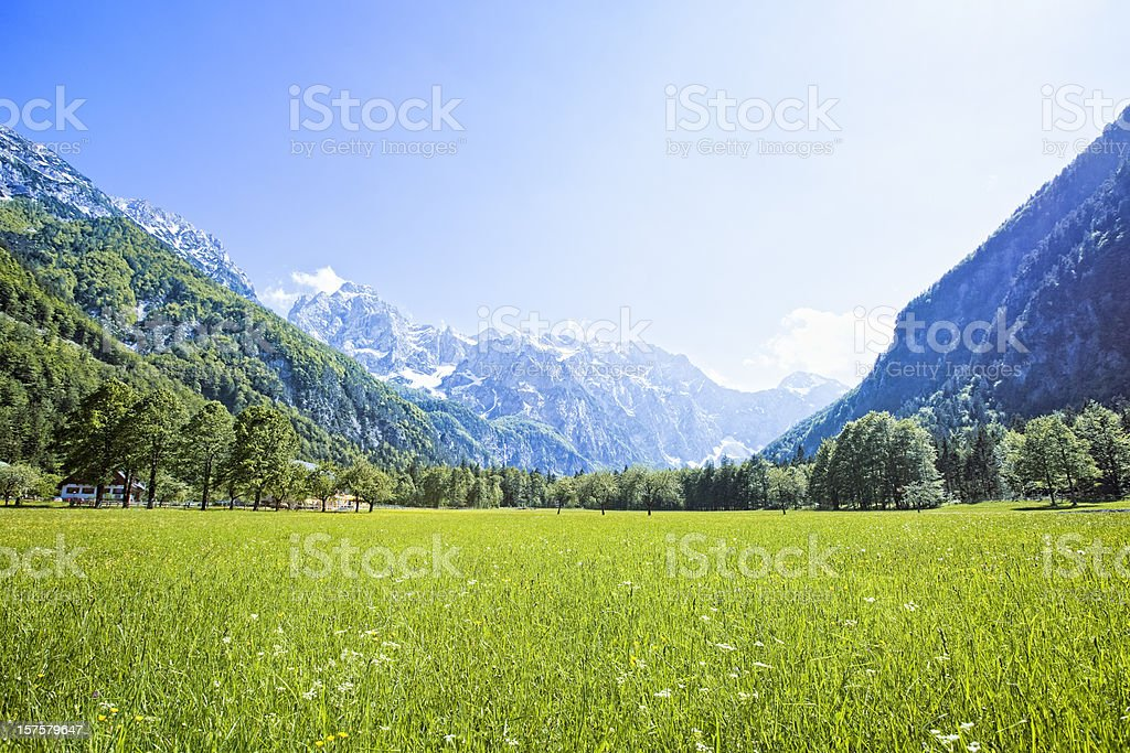 Idyllic Alps valley Logarska dolina, Slovenia stock photo