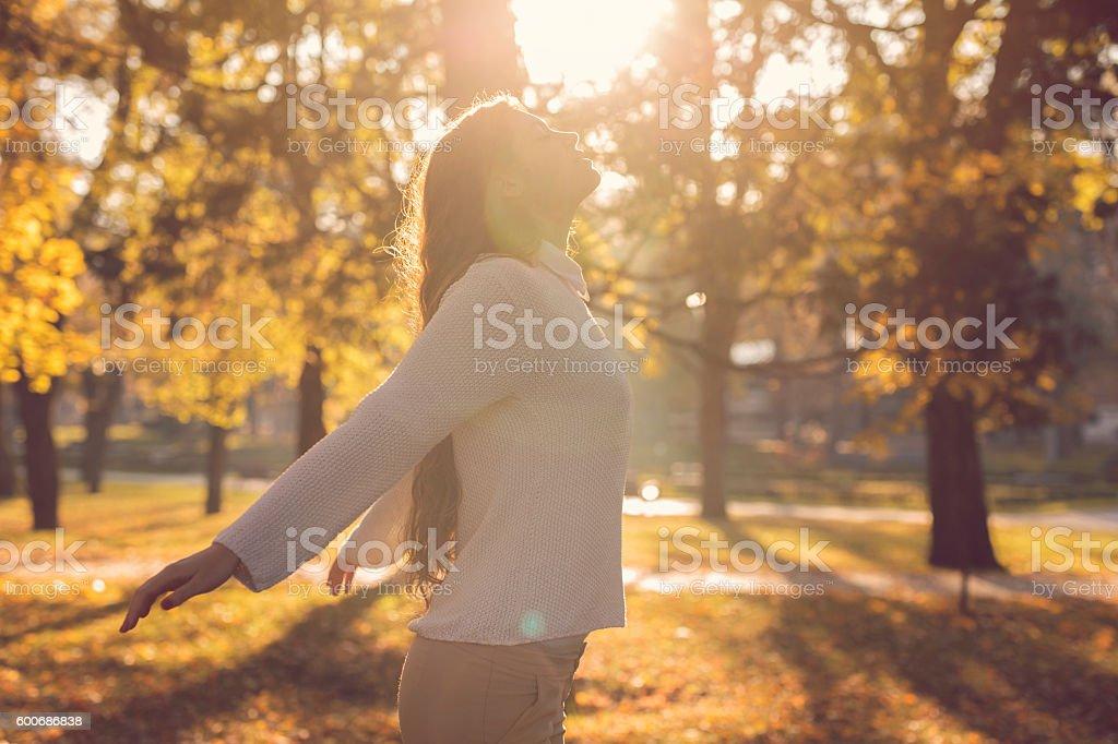 Idyllic autumn day stock photo