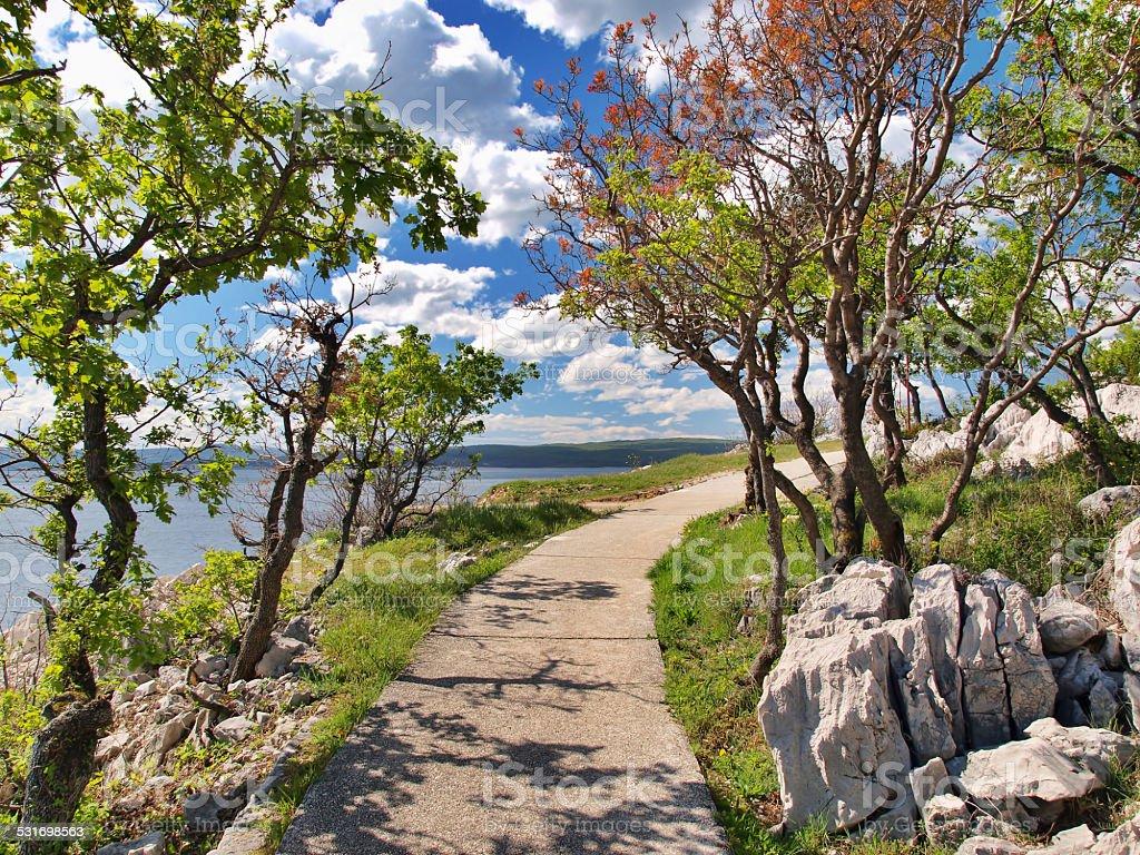 Idyllic coastal pathway stock photo