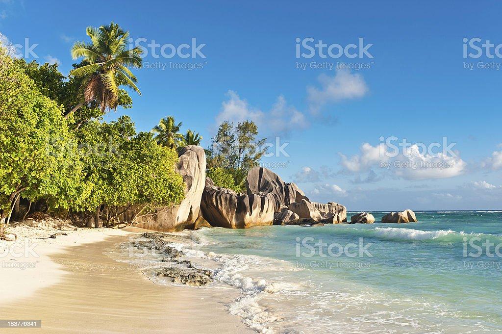 Idyllic desert island beach tropical palm tree jungle Seychelles royalty-free stock photo