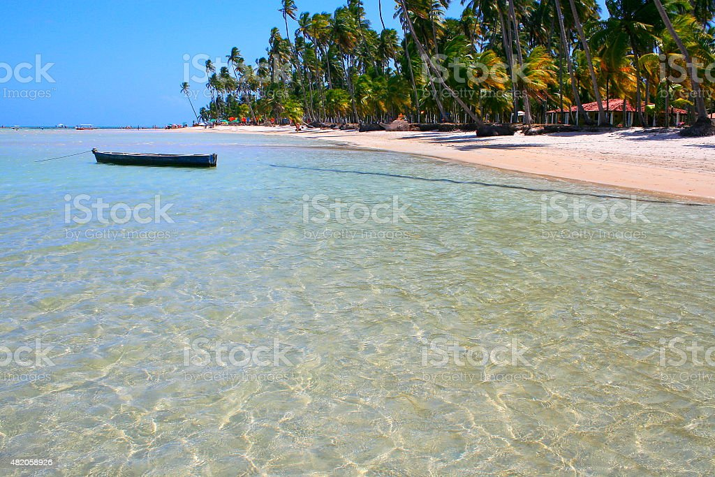 Idyllic deserted tropical palm beach in Northeastern Brazil stock photo