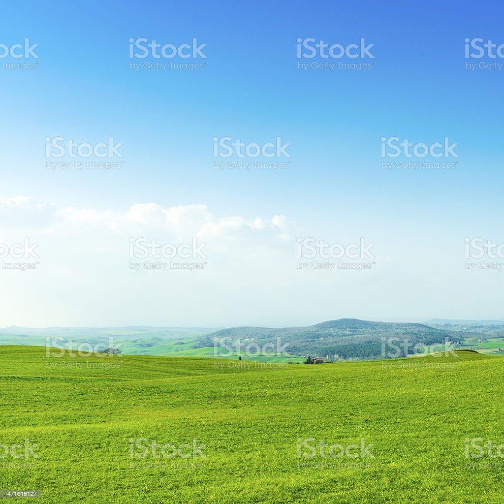 Idyllic fields in Tuscany royalty-free stock photo