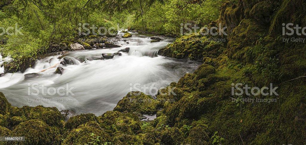 Idyllic forest river rushing through mossy rocks stock photo