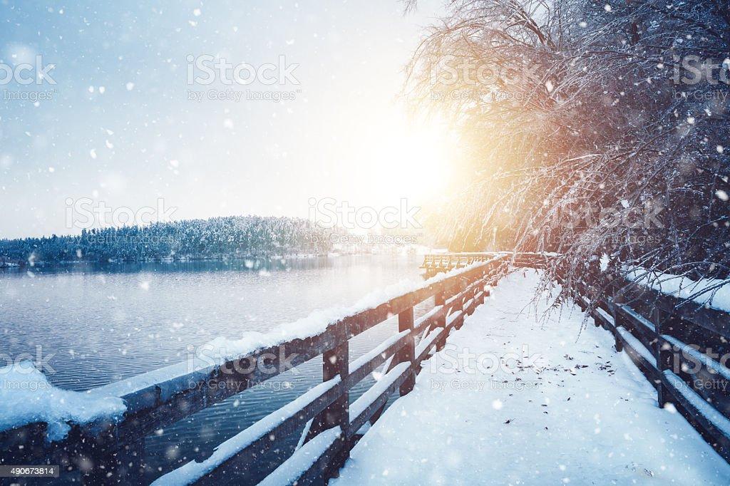 Idílico congelados trilho - fotografia de stock