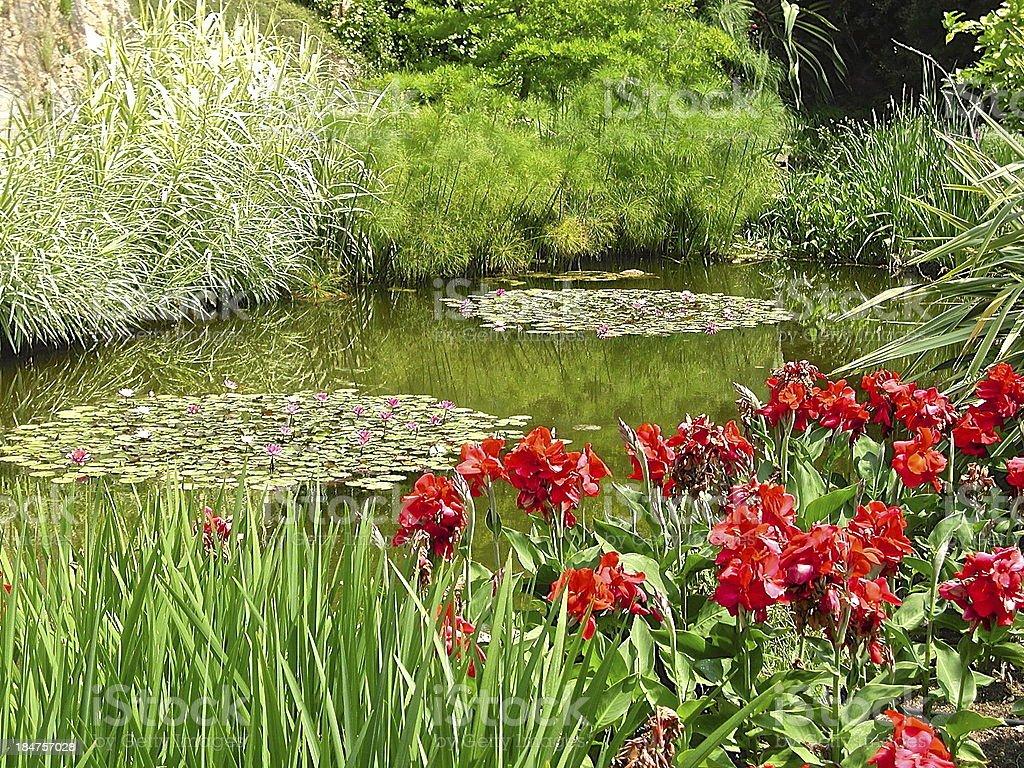 idyllic garden royalty-free stock photo