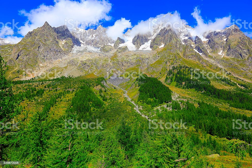 Idyllic Grandes Jorasses alpine landscape, pine trees woods, Pennines stock photo