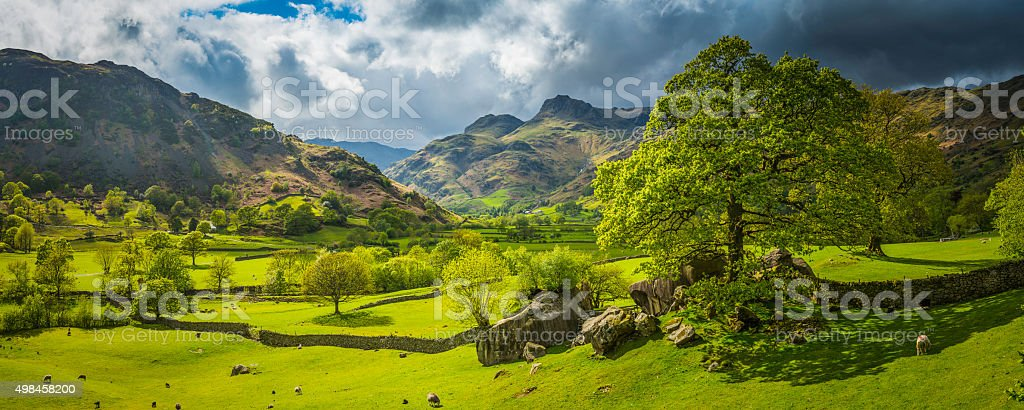 Idyllic green pasture sheep flock rugged mountain valley Lake District stock photo