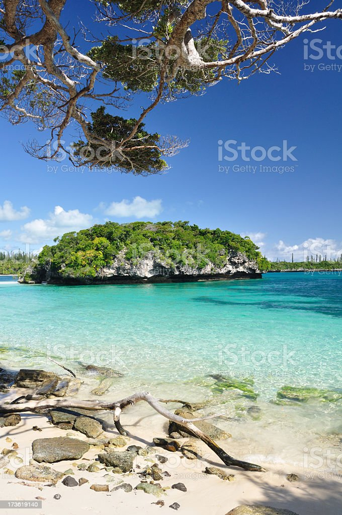 Idyllic Island Location. Le Rocher Isle of Pines New Caledonia. stock photo