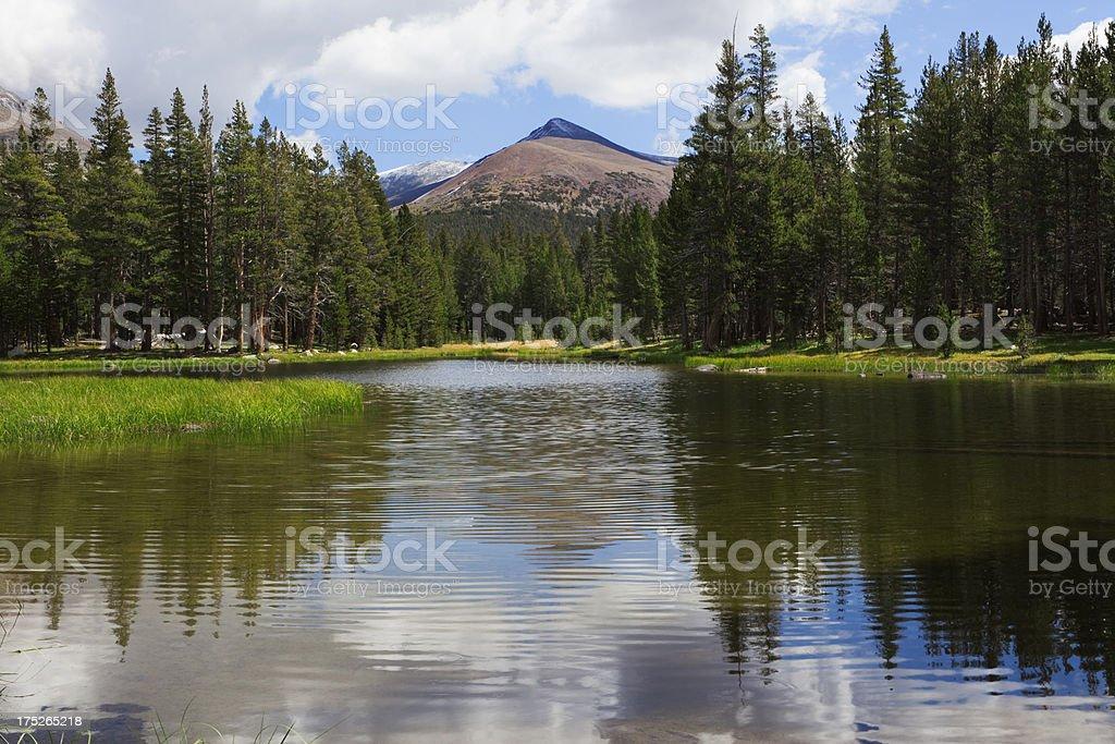 Idyllic lake at Tioga Pass stock photo