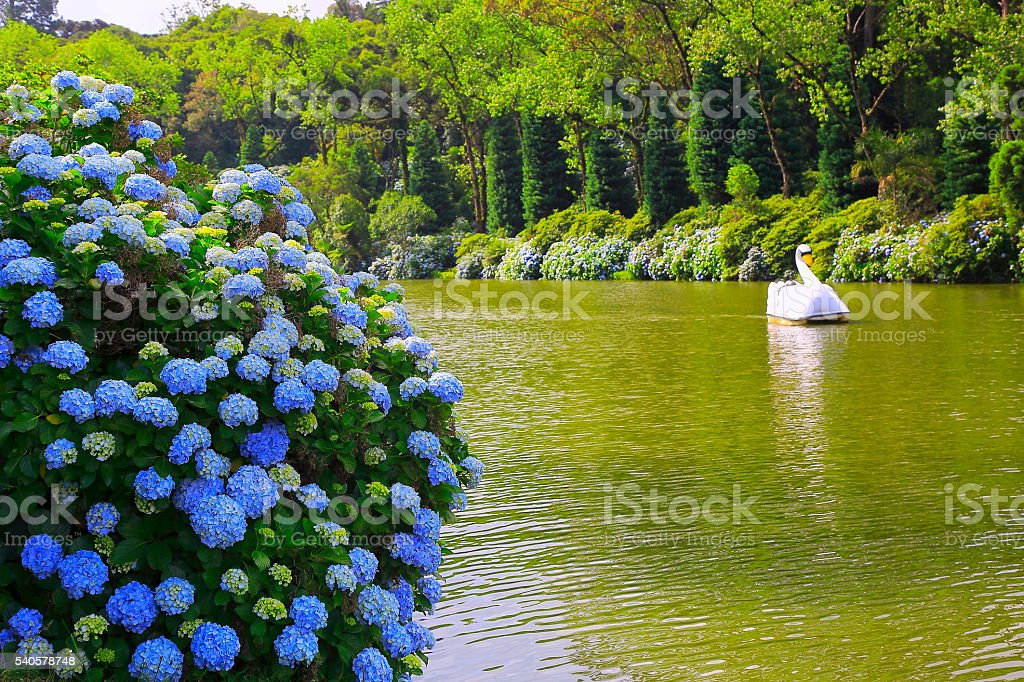 Idyllic Lake - Gramado, Rio Grande do Sul - Southern Brazil stock photo