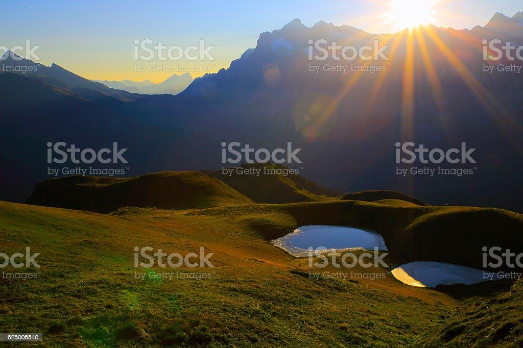 Idyllic lakes mirrored reflection above Grindelwald valley: Swiss Alps sunrise stock photo