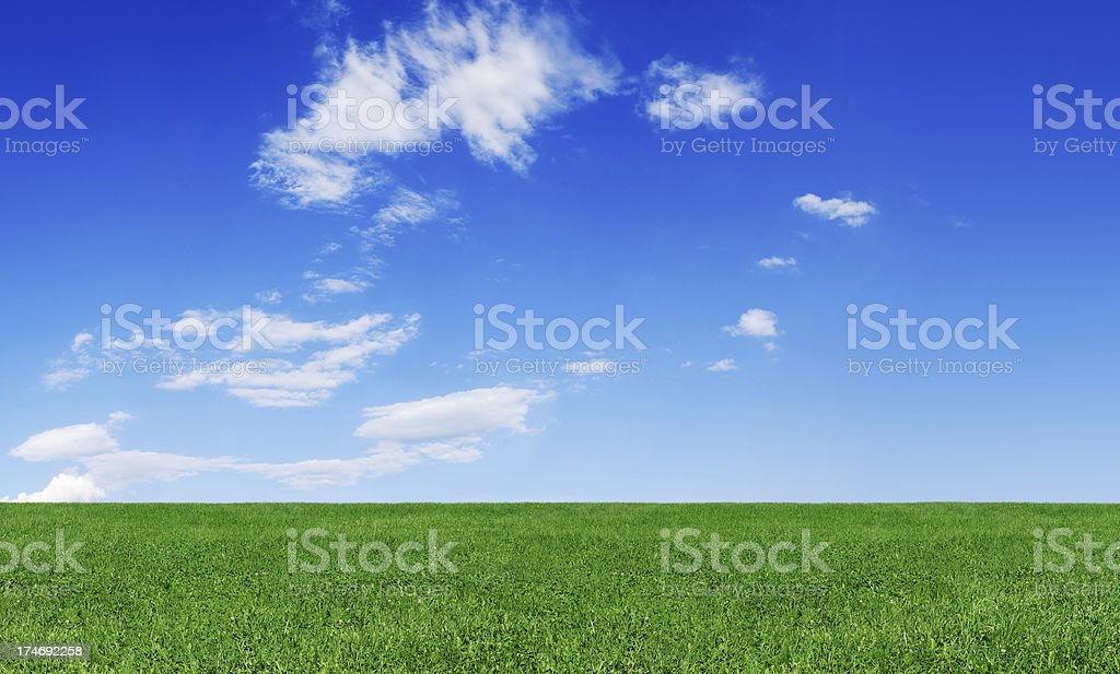 Idyllic landscape - Green field and the blue sky stock photo