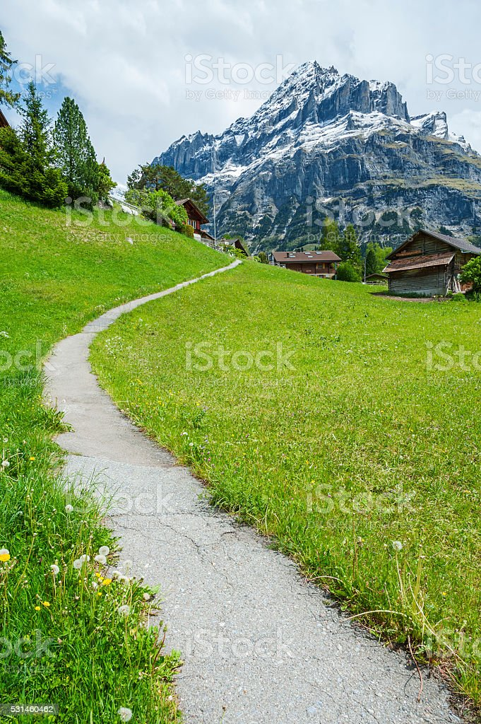 Idyllic Landscape of Swiss stock photo