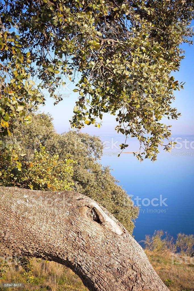 Idyllic Landscape stock photo