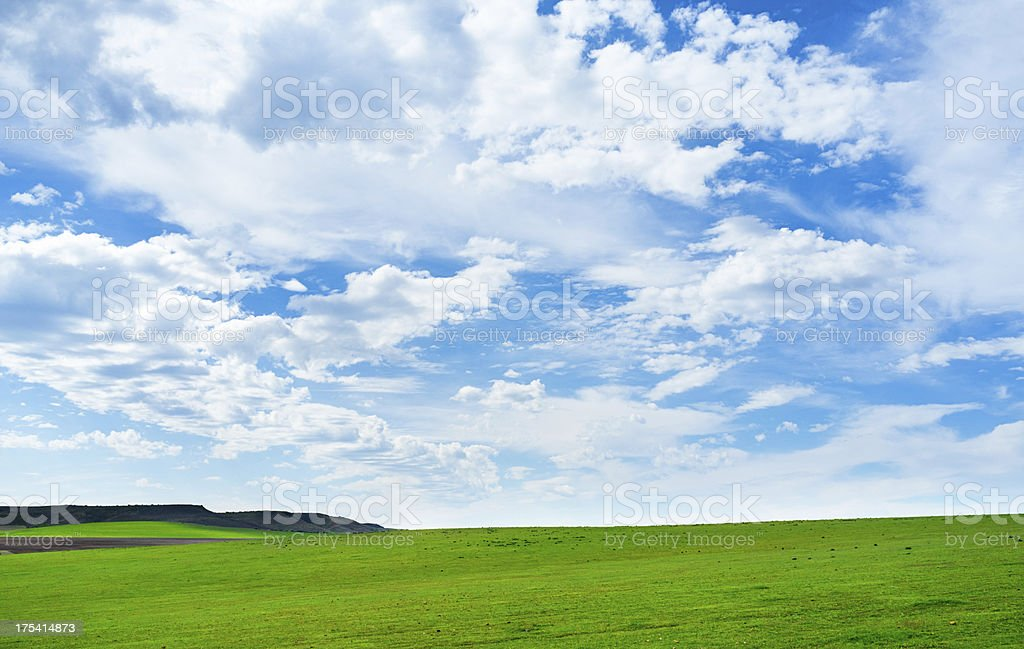 Idyllic landscape with green grass blue sky and light cloud royalty-free stock photo