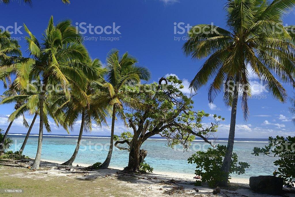 Idyllic location royalty-free stock photo