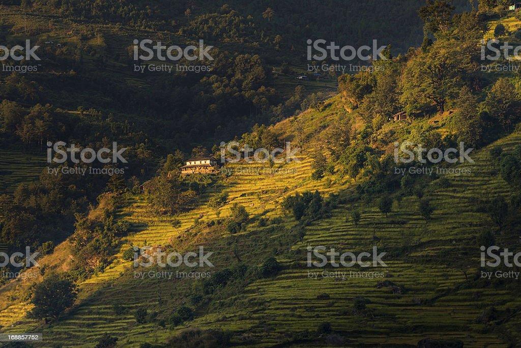 Idyllic mountain farmhouse terraced fields in sunlight Himalayas stock photo