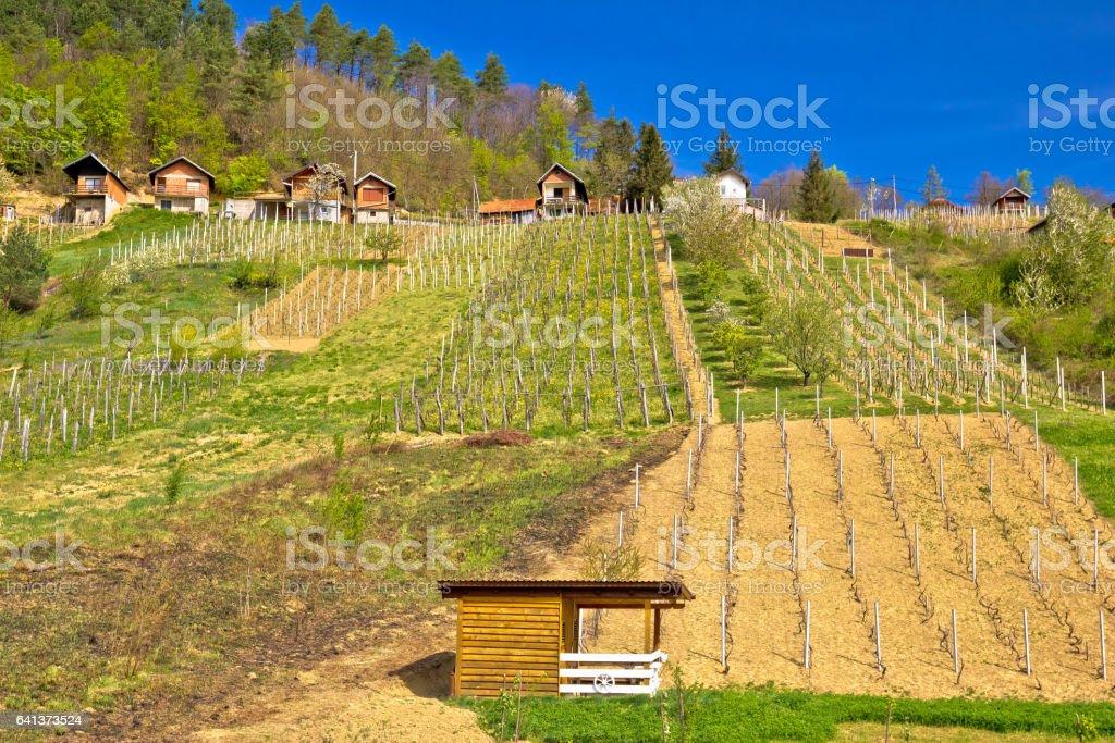 Idyllic mountain vineyards village of Prigorec near Ivanscica, Zagorje, Croatia stock photo