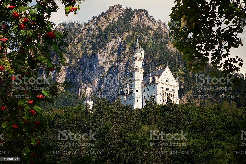 Idyllic Neuschwanstein Castle, Hohenschwangau in Germany stock photo