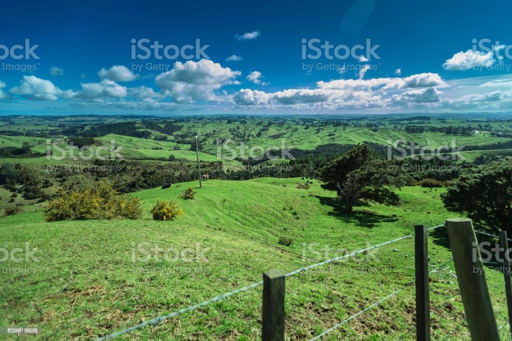 Idyllic New Zealand Landscape stock photo