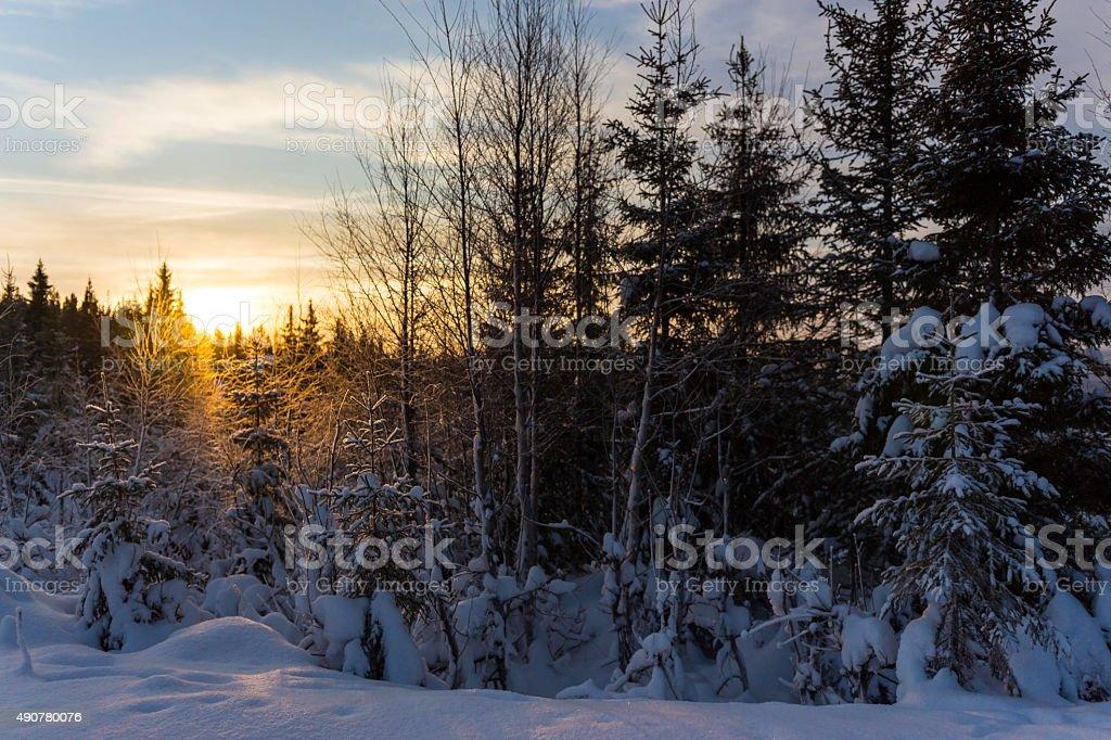 Idyllic Norwegian winter royalty-free stock photo