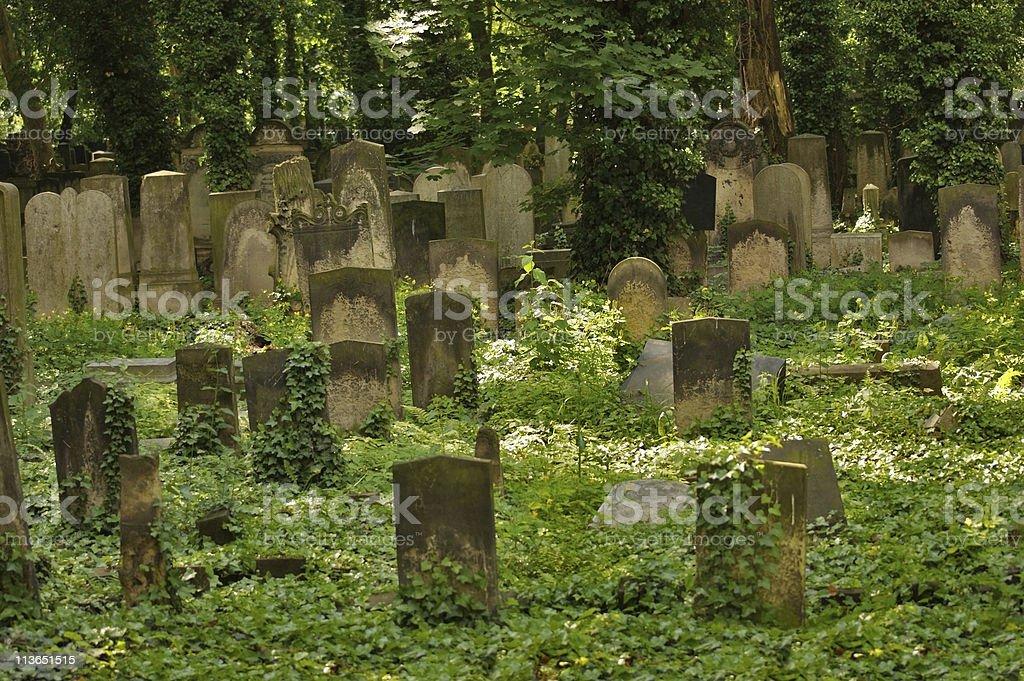 idyllic old graveyard in Berlin royalty-free stock photo