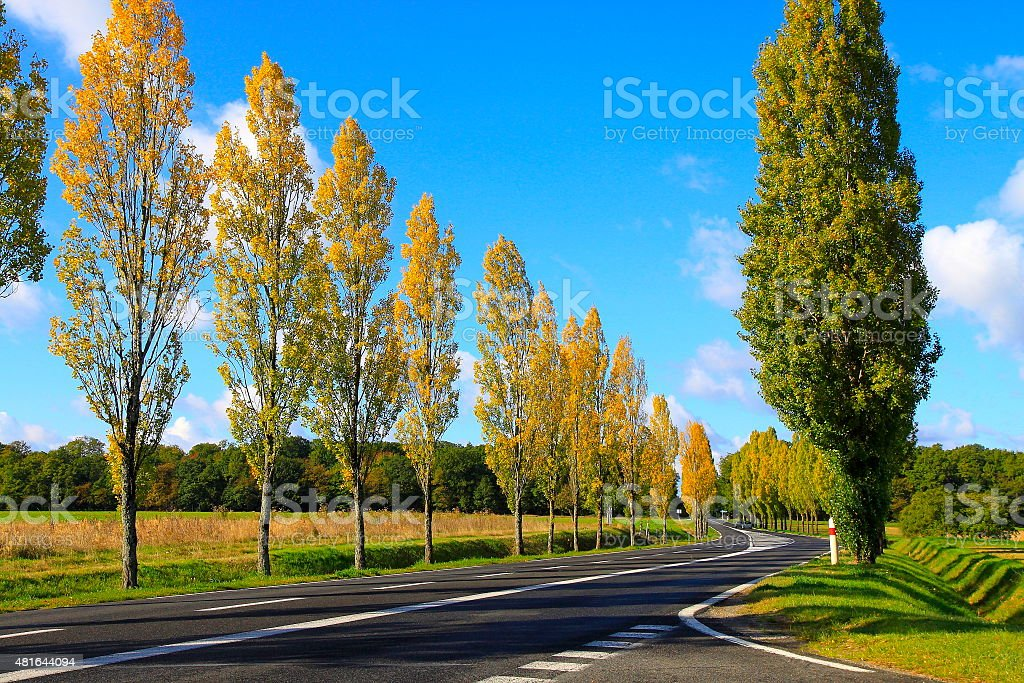 Idyllic road in French countryside at autumn - Loire Valley stock photo