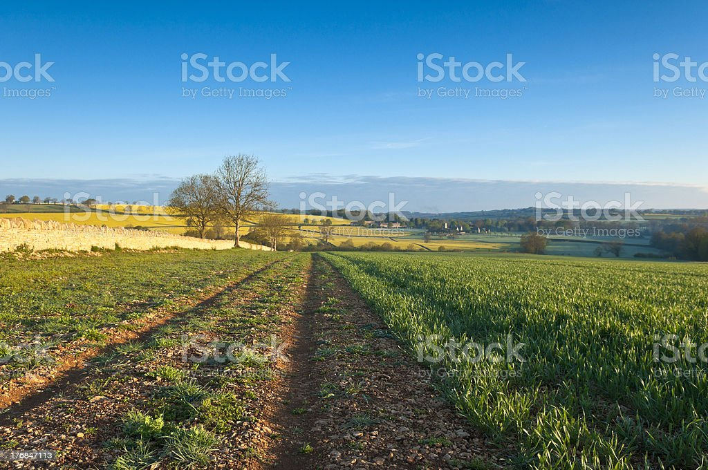 Idyllic rural landscape stock photo