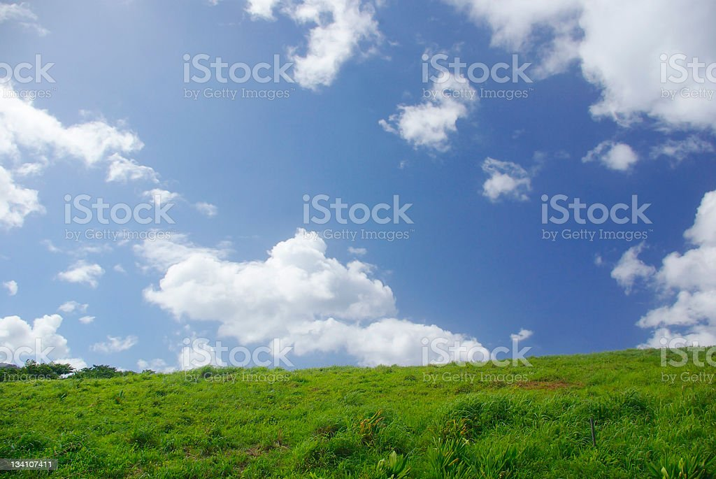 idyllic rustic scenic with sky and pasture royalty-free stock photo