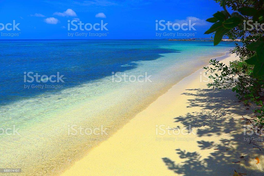 Idyllic Sandy Beach and Turquoise Caribbean Sea, Aruba stock photo
