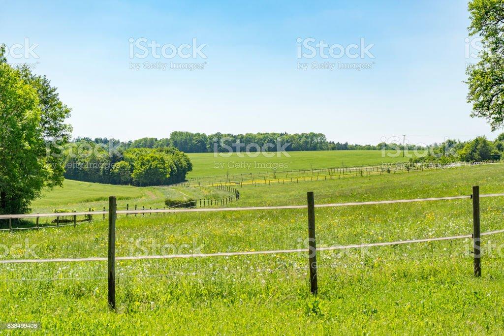 idyllic spring time scenery stock photo