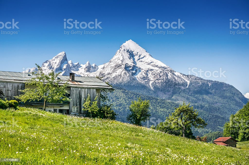 Idyllic summer landscape with traditional farm house in the Alps stock photo
