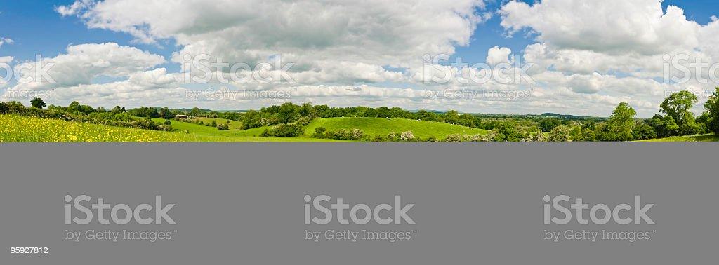 Idyllic summer meadow farmland royalty-free stock photo