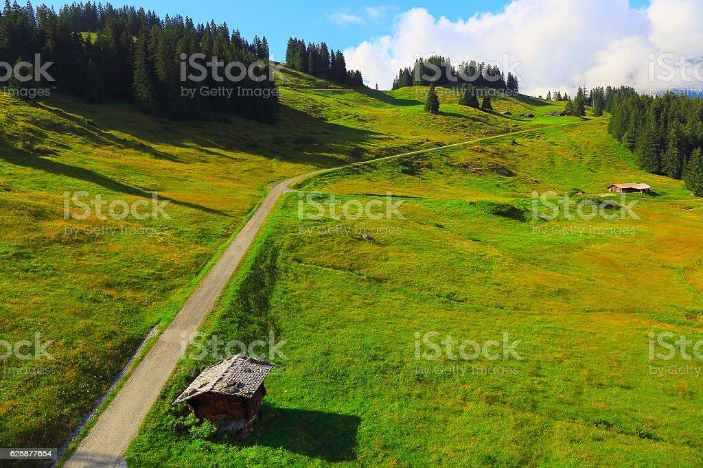 Idyllic switzerland alpine country road, Engadine barn farms: Swiss Alps stock photo