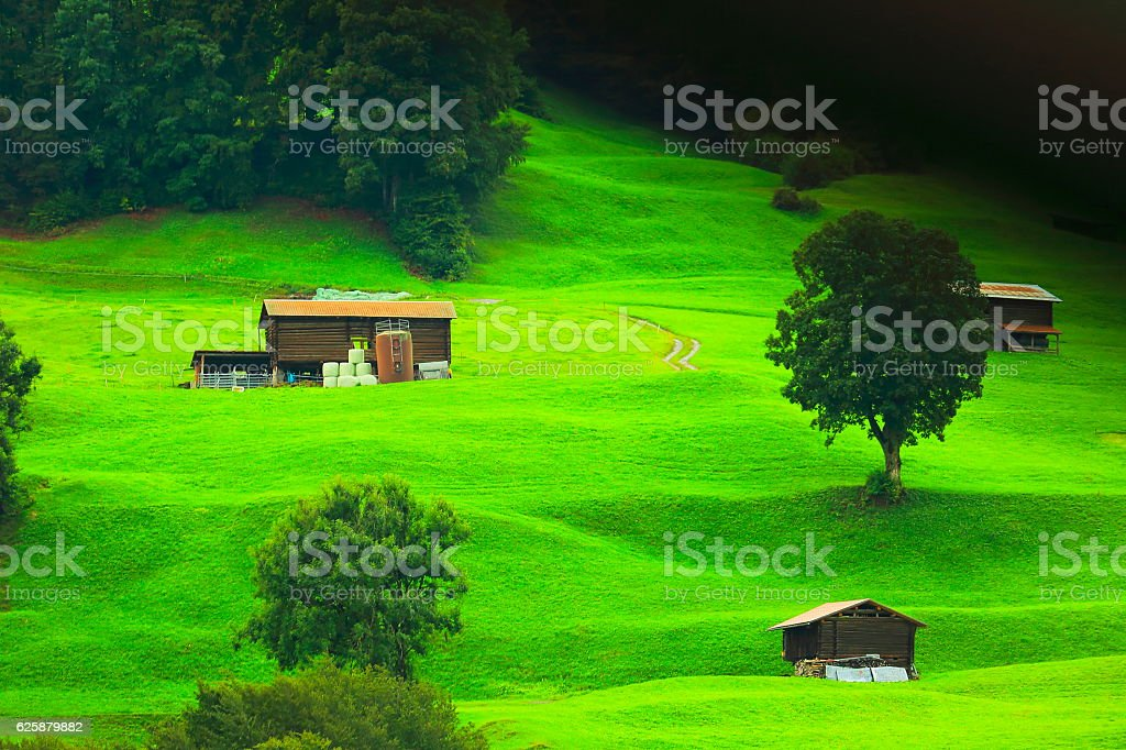 Idyllic switzerland alpine meadows, upper Engadine barn farms: Swiss Alps stock photo