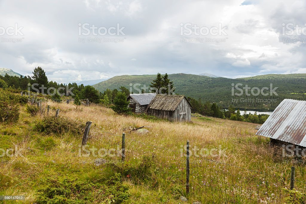 Idyllic traditional summer farm in the Norwegian mountains. stock photo