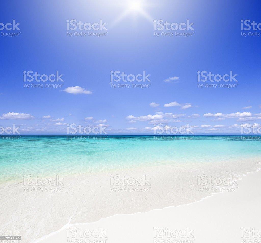Idyllic Tropical Beach Backlit with Sun stock photo