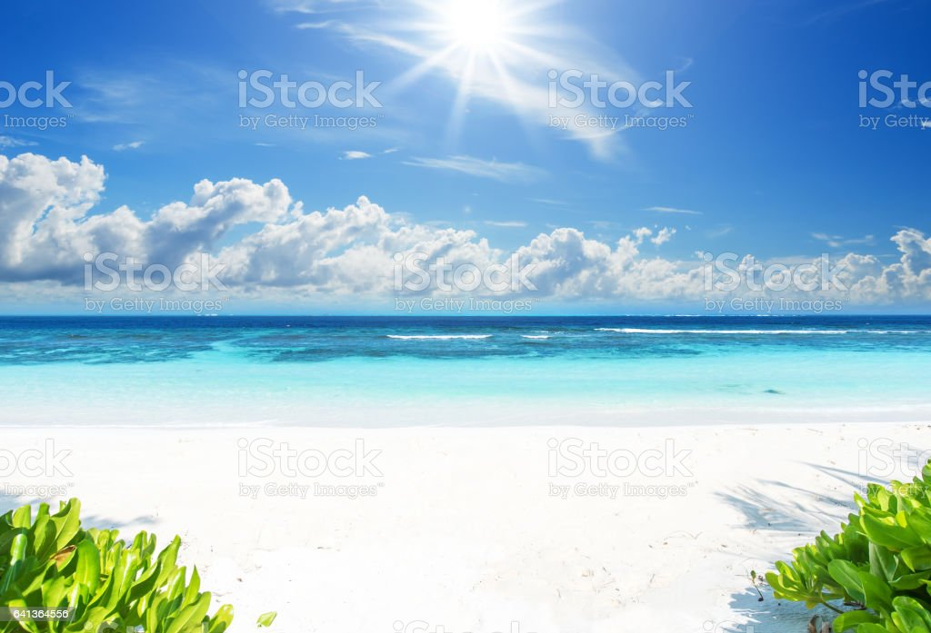 Idyllic tropical beach landscape stock photo