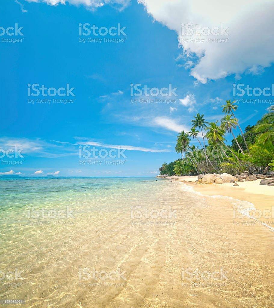 Idyllic Tropical Beach royalty-free stock photo