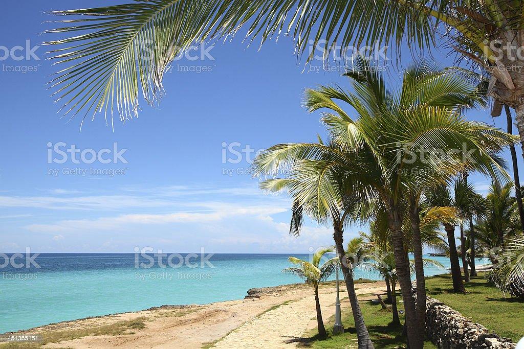 Idyllic Tropical Beach, Vacation in Cuba stock photo