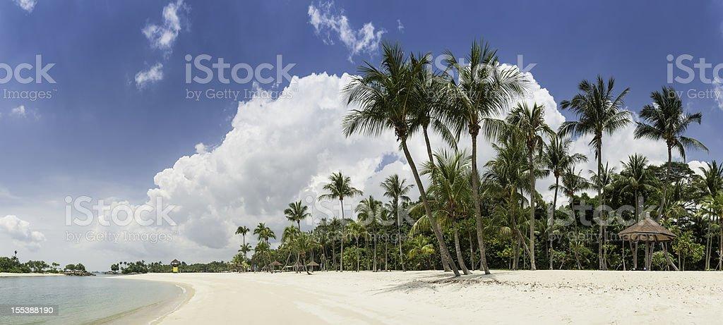 Idyllic tropical island beach palm trees lagoon panorama Sentosa Singapore stock photo