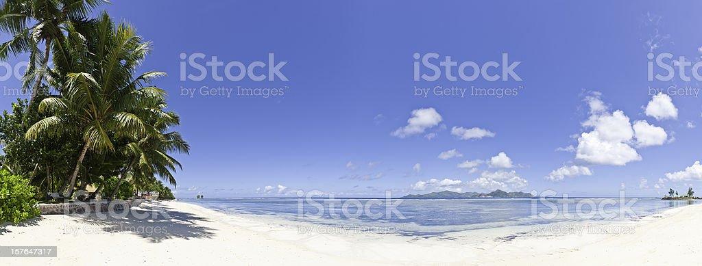 Idyllic tropical island beach white sand palm tree ocean Seychelles stock photo