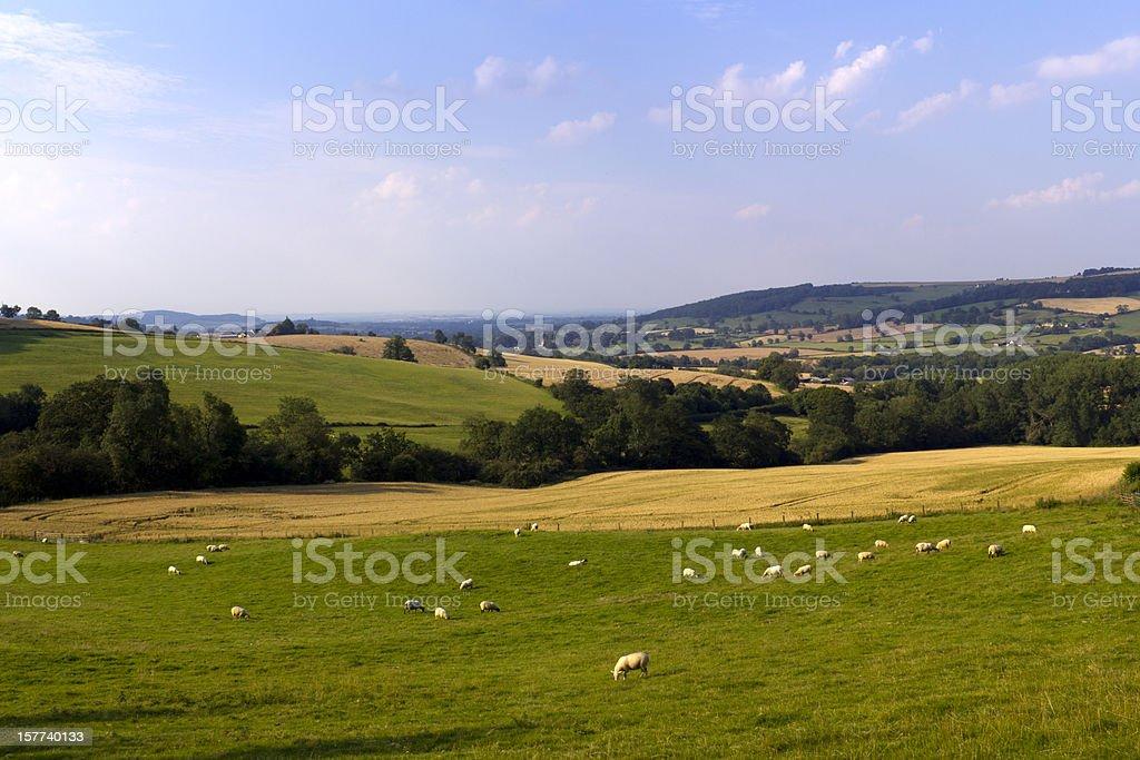 Idyllic valley in Cotswold countryside near Winchcombe, Gloucesteshire, UK. stock photo
